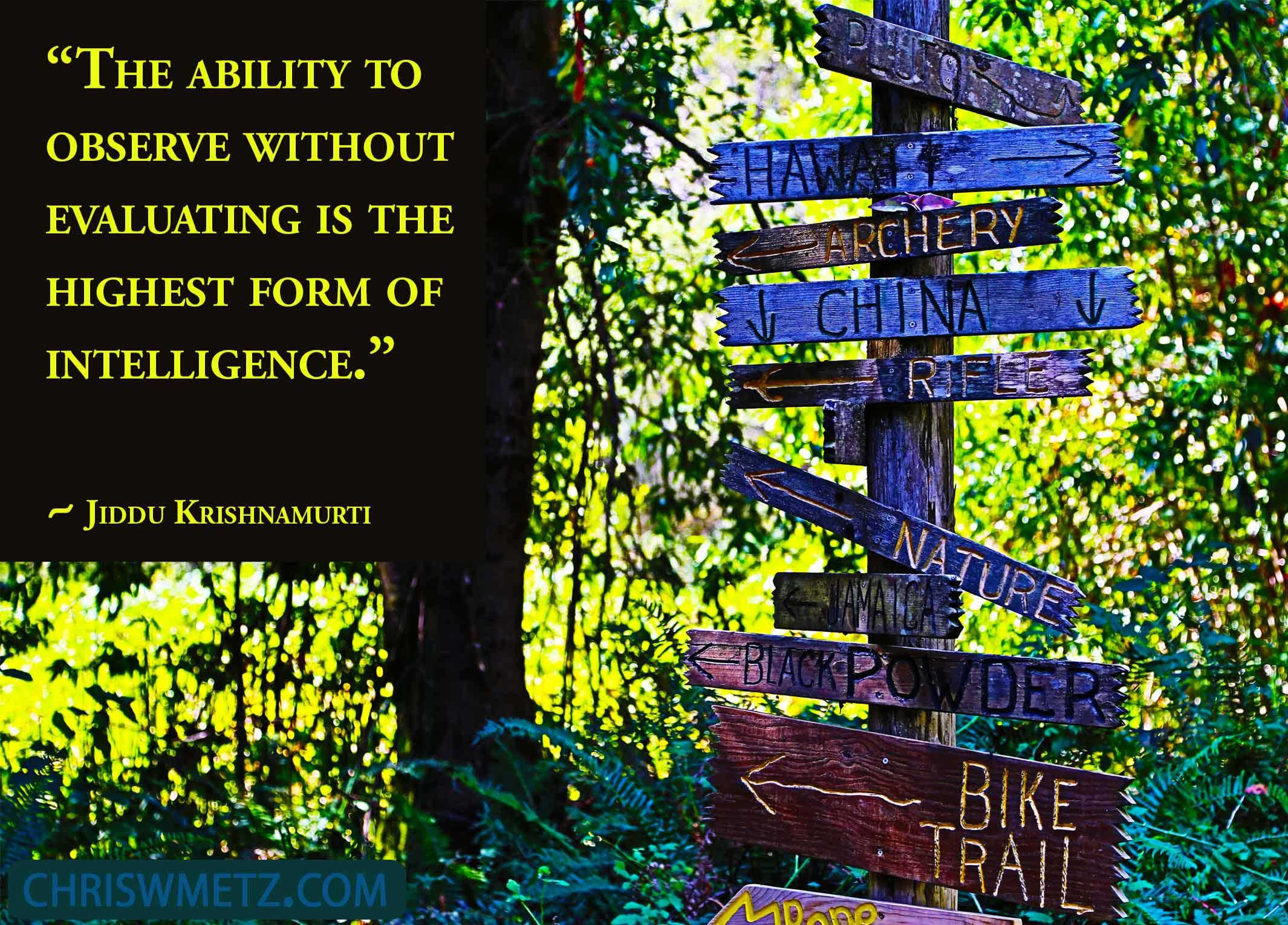 Enlightenment Quote 1 Jiddu Krishnamuri