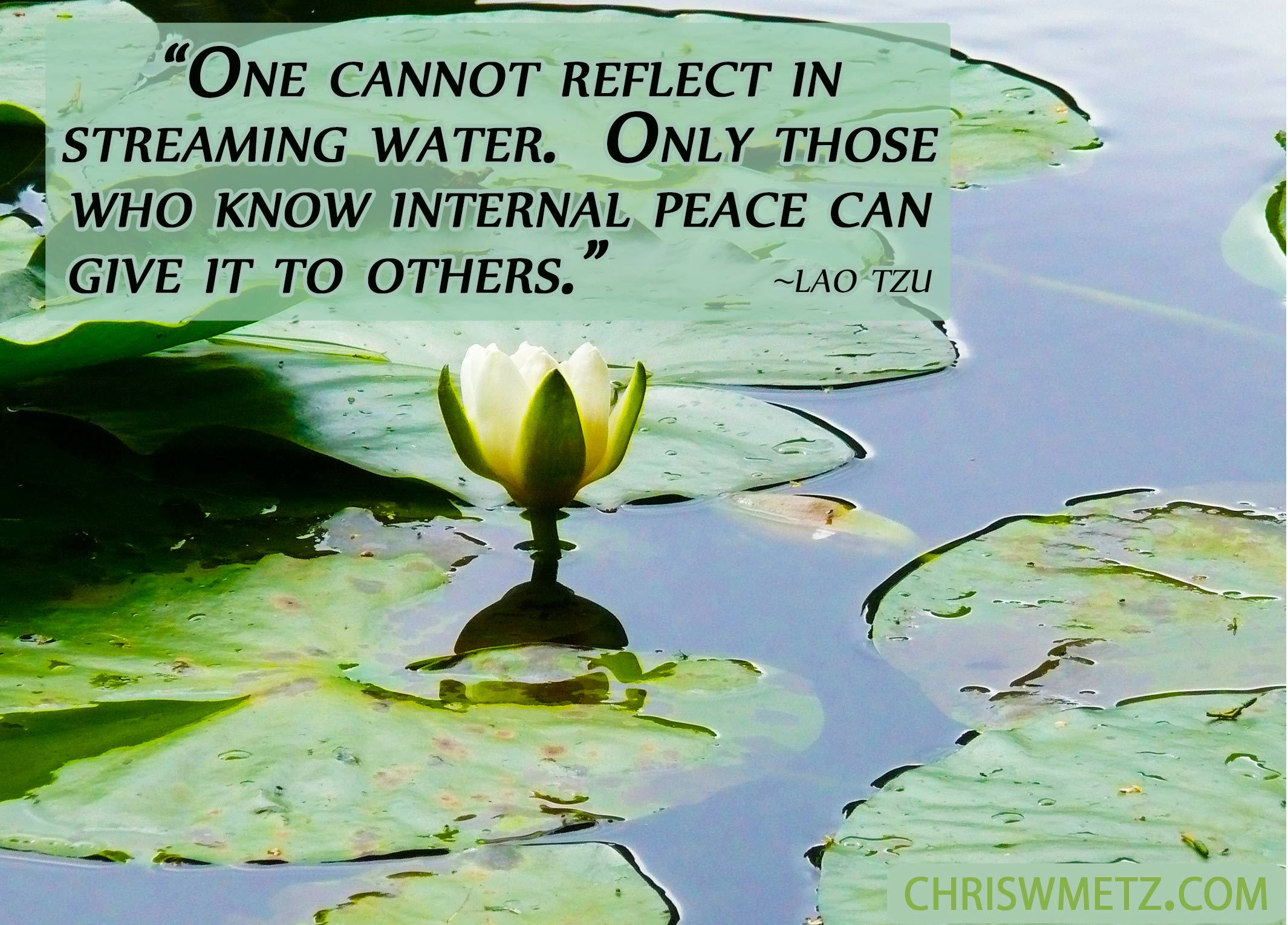 Peace Quote 5 Lao Tzu Finding peace by learning from those who have found it.
