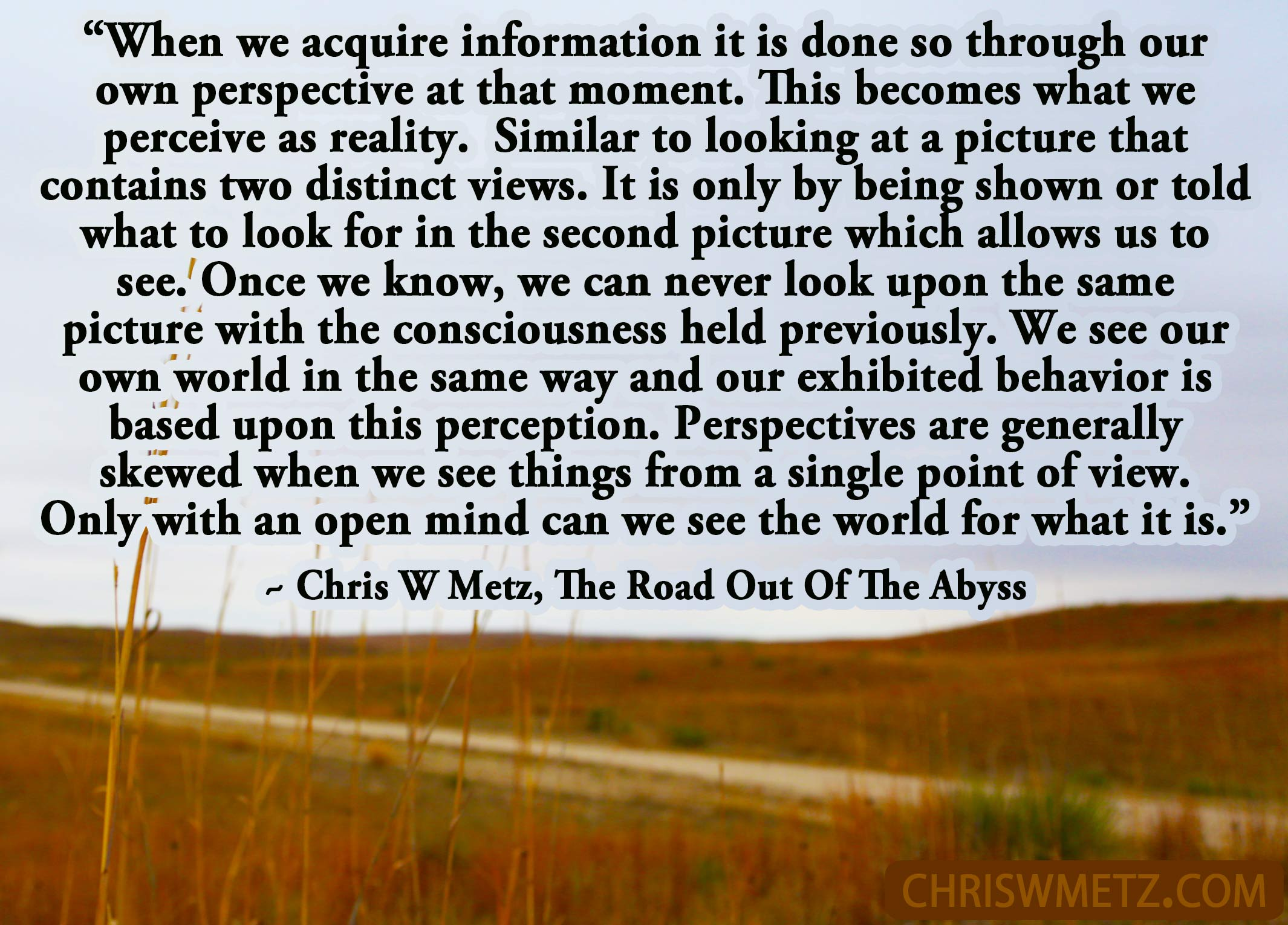 self awareness quote 16 chris w metz the road out of the abyss