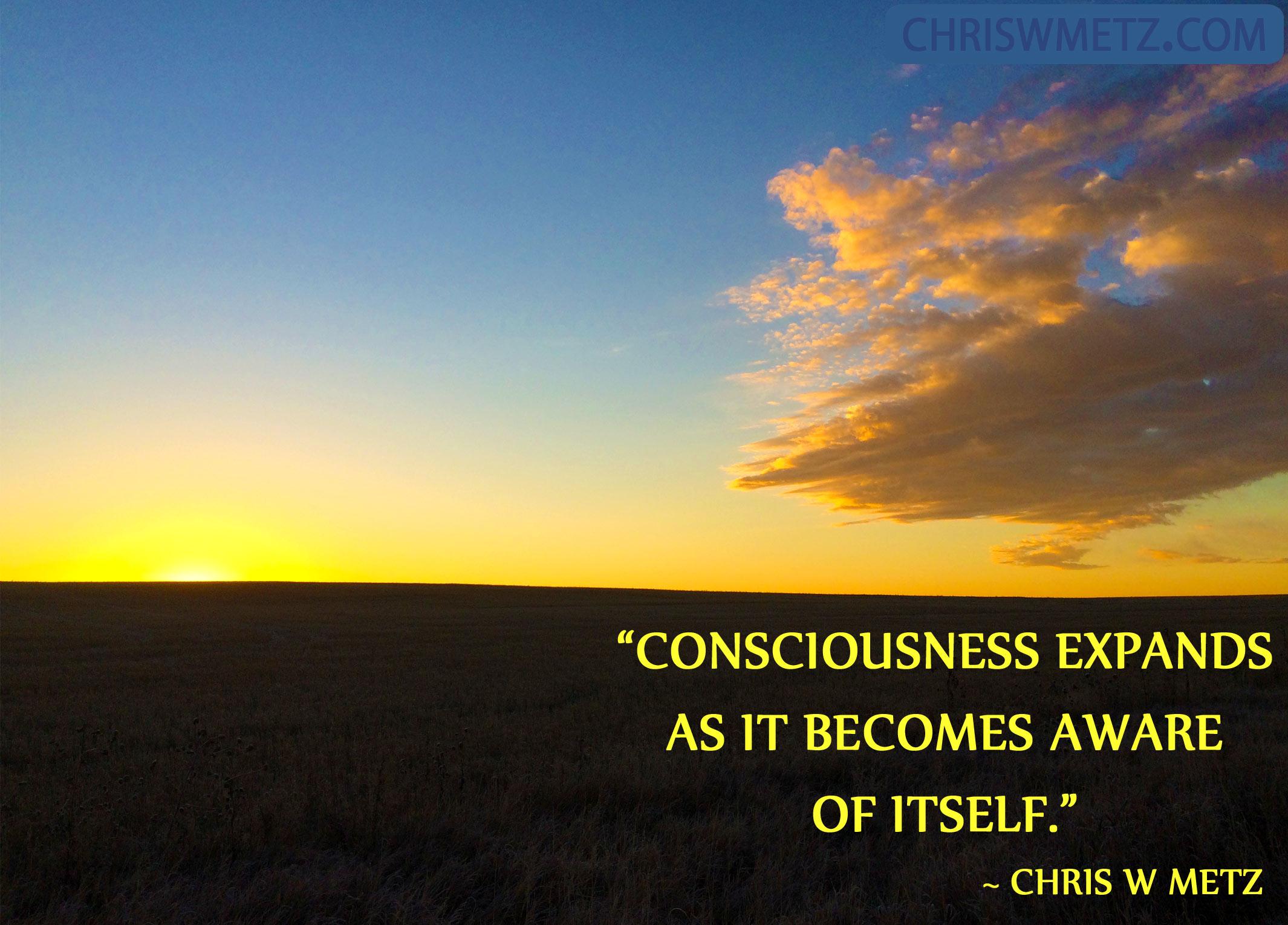 self awareness quote 23 chris w metz chris w metz