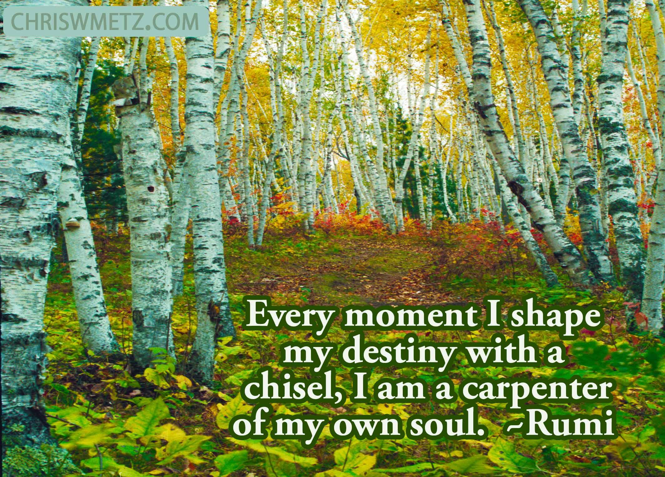Soul Quote 3 Rumi Chris W Metz