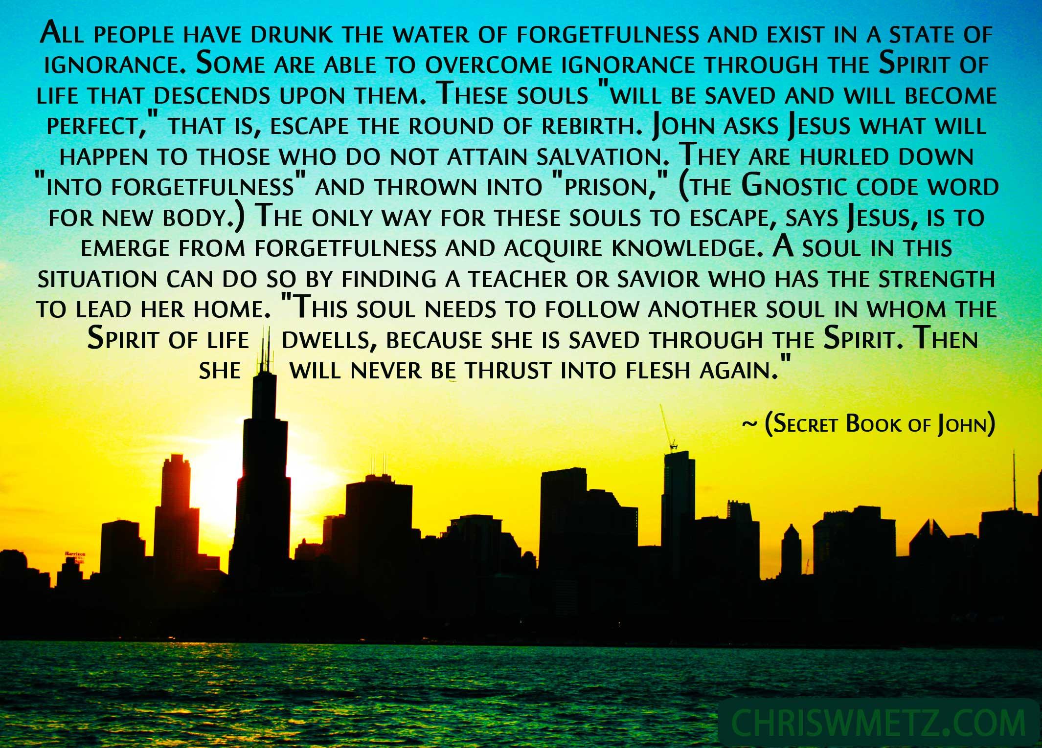 Soul Quote 7 Jesus - Secret Book Of John