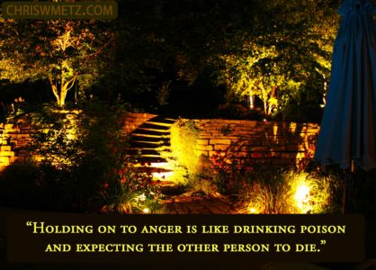 Anger Quote 1 drinking poison