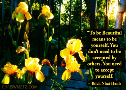 Authenticity Vulerability Quote 7 Thich Nhat Hanh