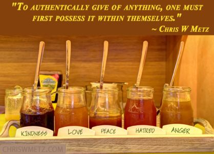 Authenticity Vunerability Quote 9 Chris W Metz