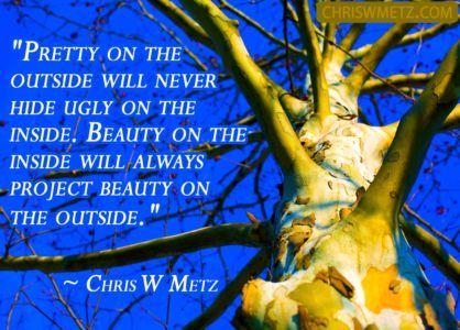 Character Quote 6 Beauty Inside Chris Metz chriswment.com