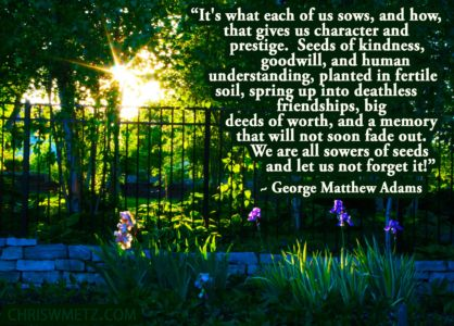 Character Quote 7 It's what Each Of Us Sows George Adams chriswmetz.com