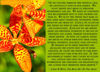 Conscious Creation Manifesting Quote 1 Chris Metz - The Road Out Of The Abyss chriswmetz.com