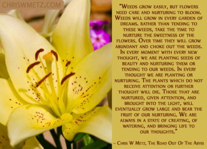 Conscious Creation Manifesting Quote 2 Chris Metz - The Road Out Of The Abyss chriswmetz.com