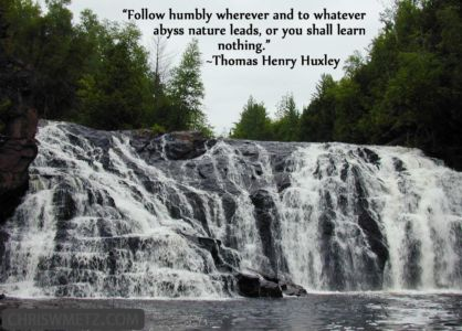 Courage Quote 6 Thomas Henry Huxley chriswmetz.com