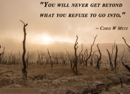 Courage Quote 8 Chris W Metz chriswmetz.com
