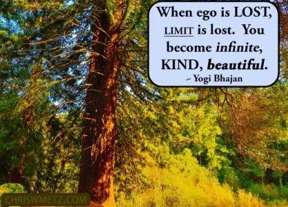Ego Quote 13 Yogi Bhajan chriswmetz.com