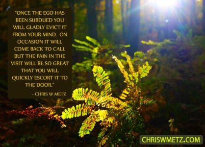 Ego Quote 23 Chris Metz chriswmetz.com