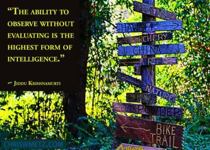 Enlightenment Quote 1 Jiddu Krishnamuri chriswmetz.com