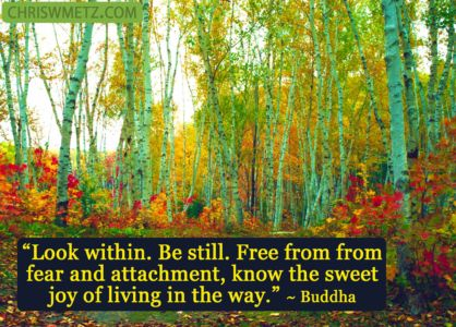 Enlightenment Quote 4 Guatama Buddha chriswmetz.com