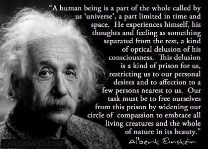 Enlightenment Quote 6 Albert Einstein chriswmetz.com