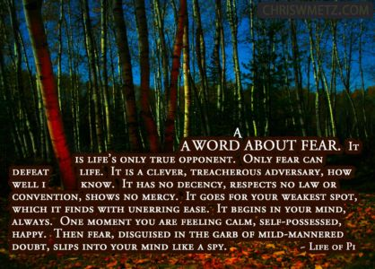 Fear Quote 17 Life-of-Pi chriswmetz.com