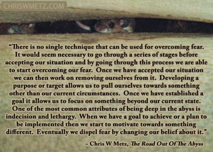 Fear Quote 2 Chris Metz - The Road Out Of The Abyss chriswmetz.com