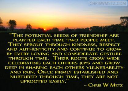Friendship Quotes 5 Chris W Metz chriswmetz.com