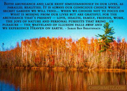 Gratitude Quote 2 Sara Ban Breatnach chriswmetz.com
