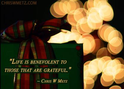 Gratitude Quote 25 Chris Metz chriswmetz.com