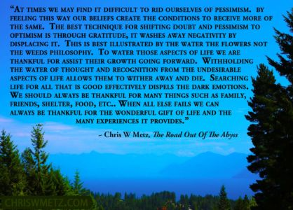 Gratitude Quote 6 Chris Metz - The Road Out Of The Abyss chriswmetz.com