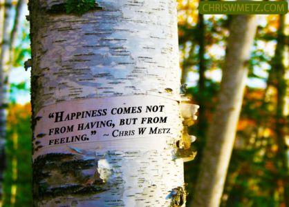 Happiness Quote 12 Chris Metz chriswmetz.com