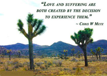 Life Quote 30 Chris Metz chriswmetz.com