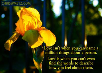 Love Quote 18 Unknown chriswmetz.com