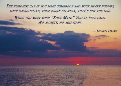 Soulmate Quote 8 Monica Drake chriswmetz.com