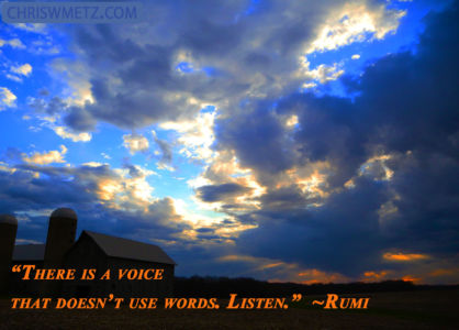 Spirit Quote 1 The Voice with no words Rumi