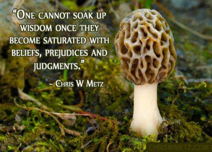 Wisdom Quote 19 Chris W Metz