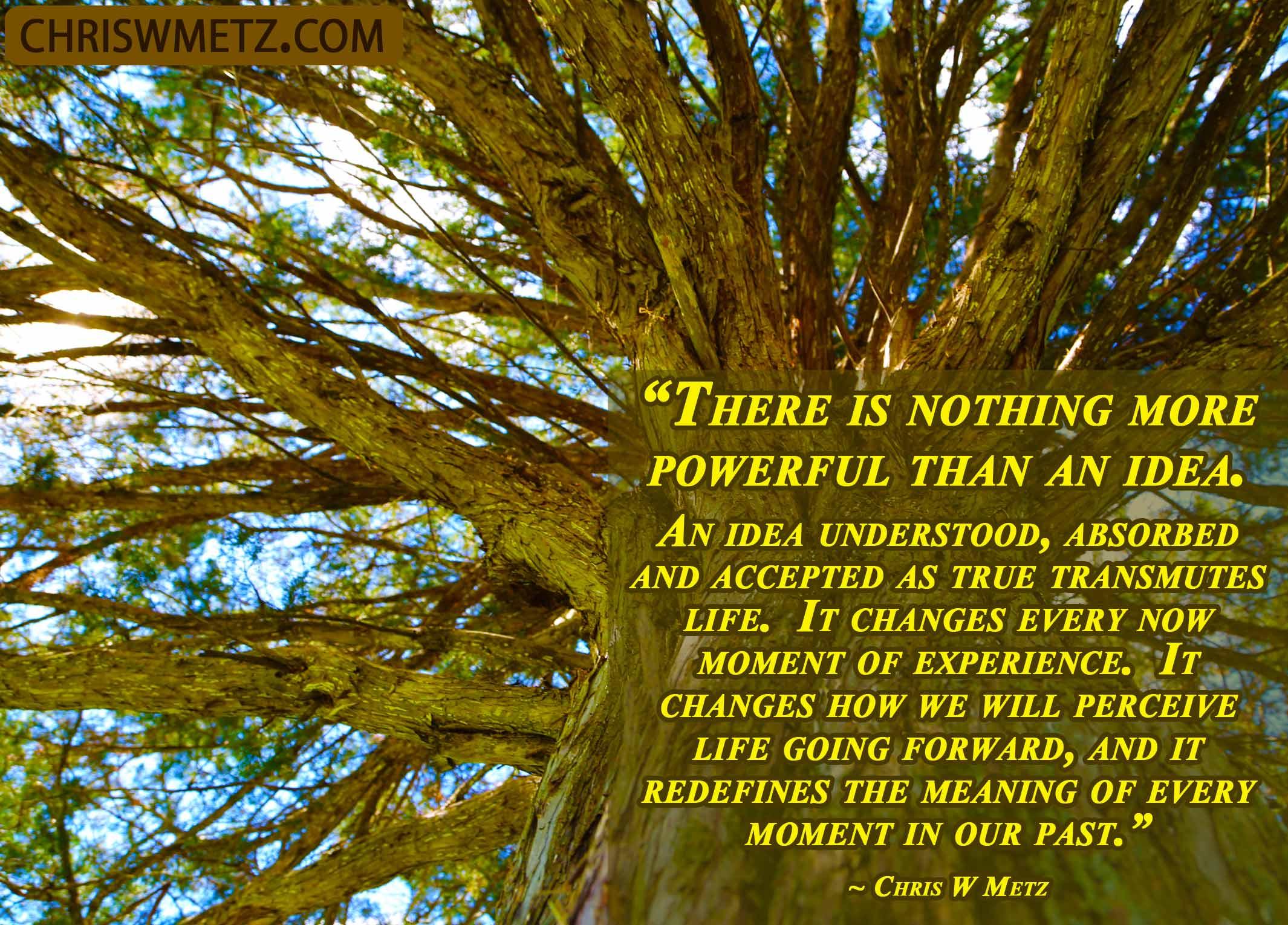 Wisdom Quote 11 Chris W Metz