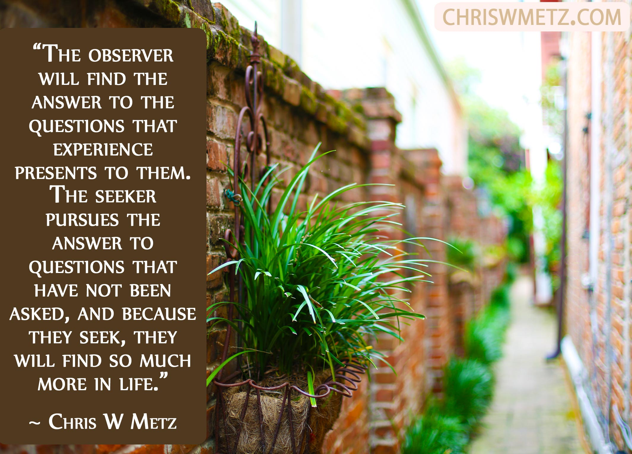Wisdom Quote 7 Chris W Metz seek awakening
