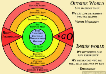 Evolutionary consciousness diagram rings of consciousness
