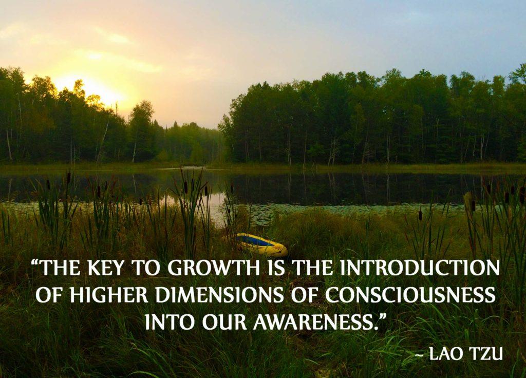 Understanding Consciousness – Part 4 – Consciousness Levels